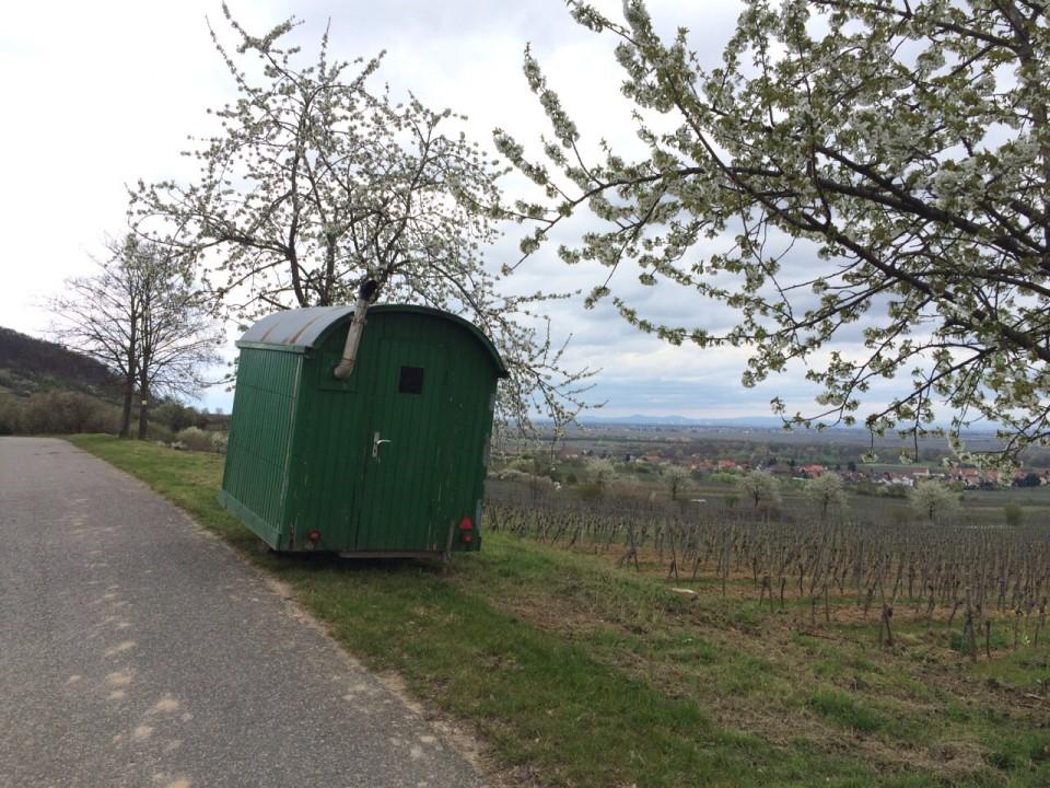 Windschiefes Häuschen in der Pfalz