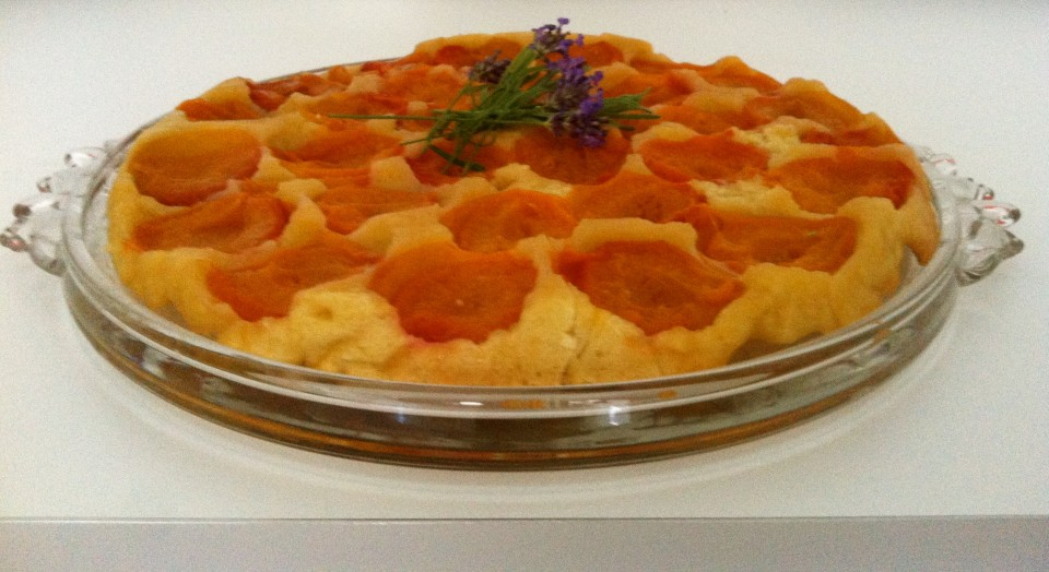 Aprikosen Tarte auf den Lieblingsflecken