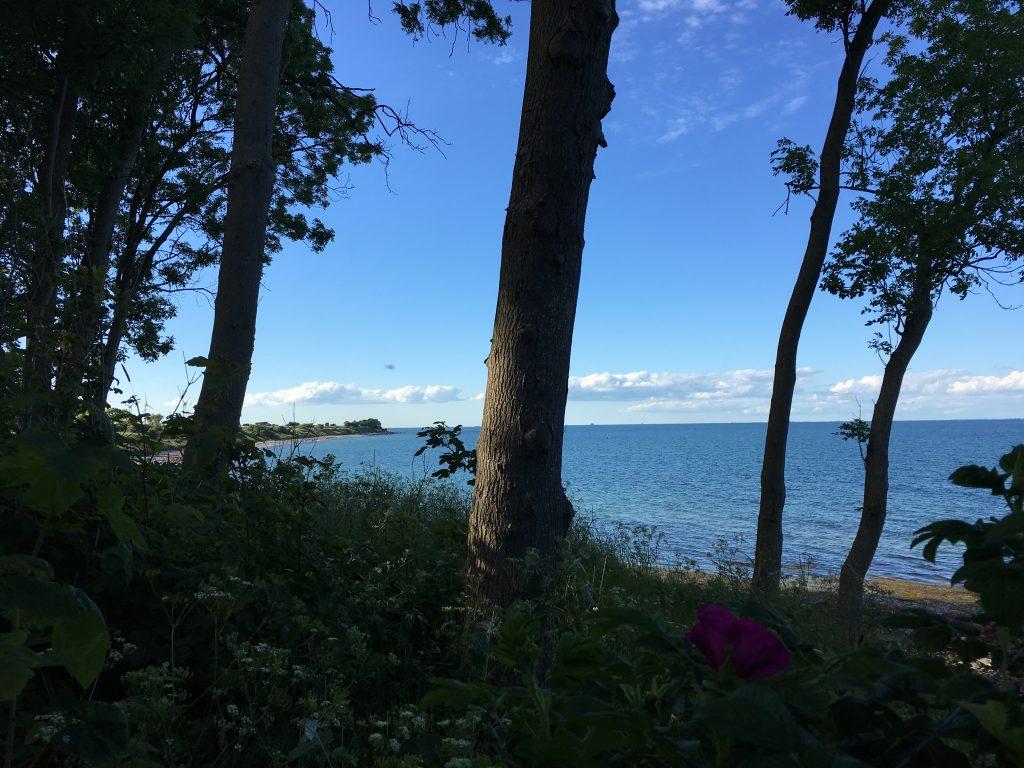Ostküste Fehmarn Ostsee- Lieblingsflecken