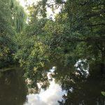 Bad Bevensen - Lüneburger Heide - Lieblingsflecken